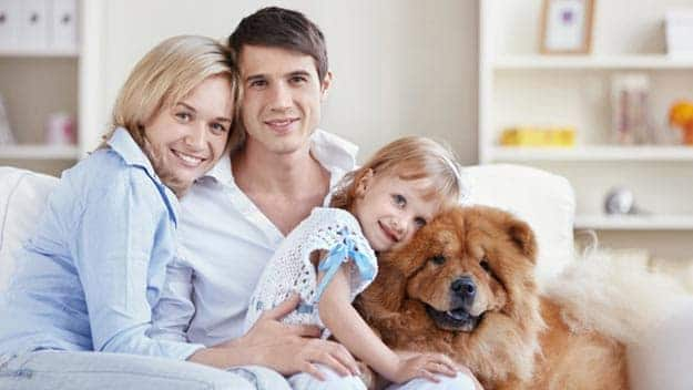 Wills & Trusts dog-young-family Direct Wills Brackley